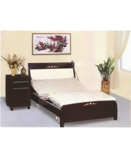 3-Function Home Care Bed